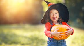 Child girl with pumpkin outdoors in halloween Royalty Free Stock Images