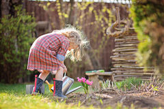 Child girl in spring garden plays and watering hyacinth flowers Royalty Free Stock Images