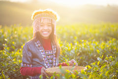 Child girl tribal Stock Photography