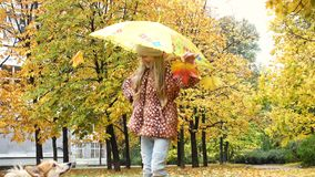 Child girl with umbrella on a autumn walk with her corgi dog