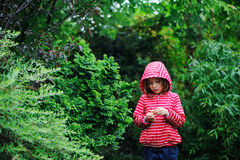 Child girl on the walk in rainy garden, wearing red raincoat Stock Photos