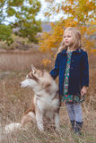 Child girl is walking with cute husky dog Royalty Free Stock Photo