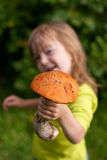Child gives a mashroom. Selective focus - on mushroom cap stock images