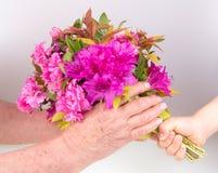 Child giving flower Stock Photo