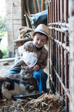 Child is giving milk to cats. Child with hat is giving milk to cats Royalty Free Stock Image