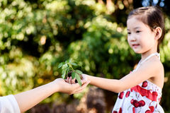 Child giving plant seedling Stock Photo