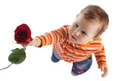 Child giving red rose Royalty Free Stock Photo