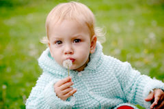 Child glowing into dandelion. A baby blowing into dandelion and looking into camera royalty free stock photo