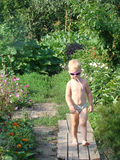 Child goes. On a wooden walkway Royalty Free Stock Photo