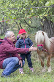 Child, grandfather and pony Stock Image