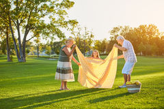 Child with grandparents, summer park. royalty free stock photos