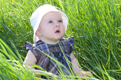 Child on grass Stock Images