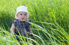 Child on grass Stock Photography
