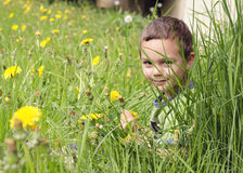 Child in grass on meadow Stock Photography