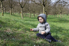 Child on a grass Royalty Free Stock Images