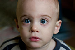 Child with gray-blue eyes Royalty Free Stock Photography
