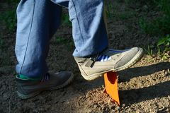 Child in gray shoes working in garden with orange toy spade. Child in blue jeans and gray shoes working in garden with orange steel toy spade royalty free stock images