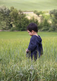 Child in green field Stock Photo