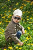 Child on green grass lawn with dandelion flowers on sunny summer day. Kid playing in garden. Child on green grass lawn with daisy and dandelion flowers on sunny Royalty Free Stock Photography
