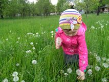 Child in green grass Royalty Free Stock Images