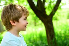 Child on green nature background. Spring and joy. Little boy looks away. Portrait. Allergy and pollinosis. Beautiful. Baby face stock image