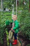 Child in Greenhouse. Garden. Vegetables Royalty Free Stock Photo