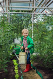 Child in Greenhouse. Garden. Vegetables Stock Images