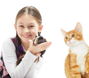 Child and guinea pig and kitten Royalty Free Stock Photos