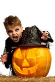 Child in halloween costume. Portrait of little boy wearing halloween costume with pumpkin on white background Royalty Free Stock Photography