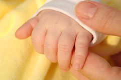 Child hand. The child and mother hands Stock Photos