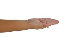 Child hand  isolated on white. Background Royalty Free Stock Image