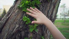 Child hand sliding against new green foliage