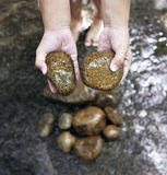 A child hand with a stone. A child's hand collecting a stone from the stream Stock Images