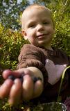 Child handing out bilberries stock photos