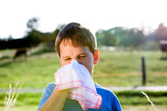 Child with handkerchief in nature. Child with an allergy to pollen while you blow your nose with a white handkerchief in nature Royalty Free Stock Images