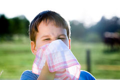 Child with handkerchief in nature Stock Photos