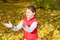 Child hands catches air bubbles Stock Images