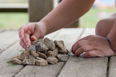 Child hands. Caucasic child playing with stones Stock Image