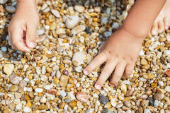 Child hands collect pebbles Stock Photos