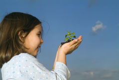 Child hands holding plant Stock Images