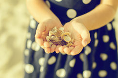 Child hands holding sea shells. Stock Photo