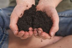 Child Hands Holding Soil in Hands Stock Photos