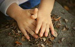Child hands and leaves. Little child hands playing with dry leaves Stock Photography