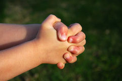 Child hands praying royalty free stock image