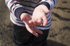 Child hands in the sand. Child`s hands are stained in the sand Royalty Free Stock Image