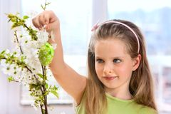 Child hang easter egg on cherry branch Stock Photography
