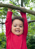 Child hanging on a tree branch Stock Photos