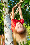 Child hanging from a tree branch Stock Photos