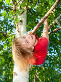 Child hanging from a tree branch Royalty Free Stock Images