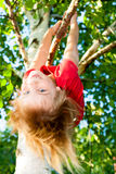Child hanging from a tree branch Stock Image
